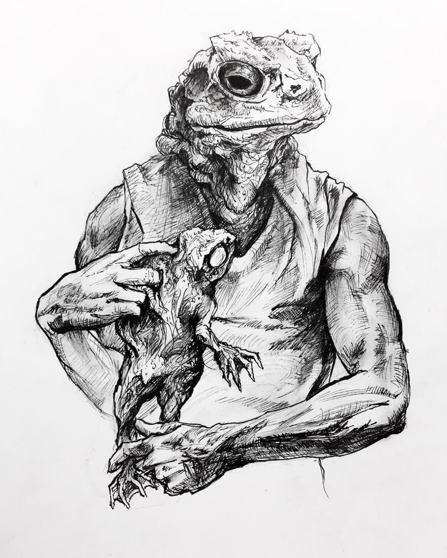 13-The-Toad-Matthew-McHugh-Animal-Drawings-and-Surreal-Interpretations-www-designstack-co