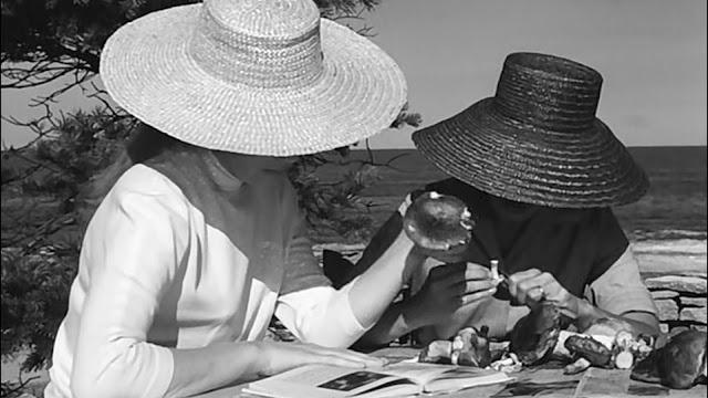 Persona - Quando Duas Mulheres Pecam (1966)