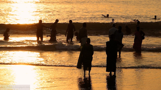 Merikylpyjä Intian Gokarnassa