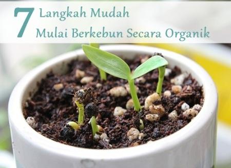 7 Langkah Mudah Memulai Berkebun Secara Organik