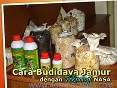 distributor-nasa-di-ngronggot-nganjuk-082334020868