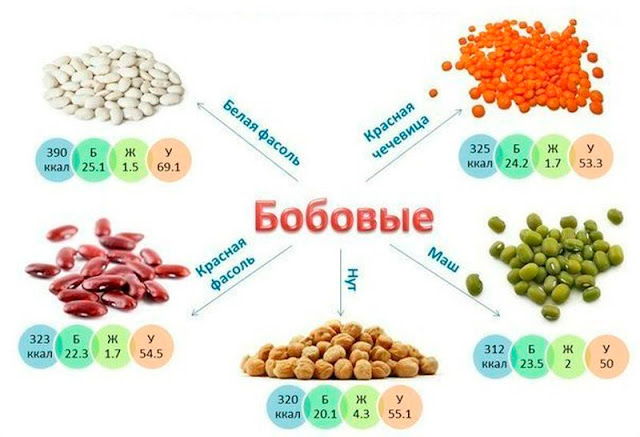 Пищевая ценность бобовых