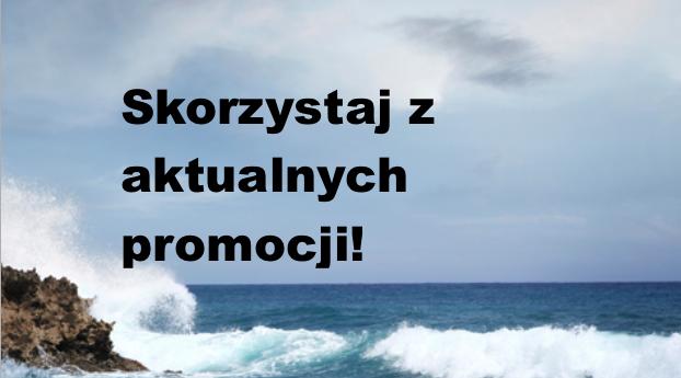 http://www.kosmetykiani.pl/search/label/aktualne%20promocje