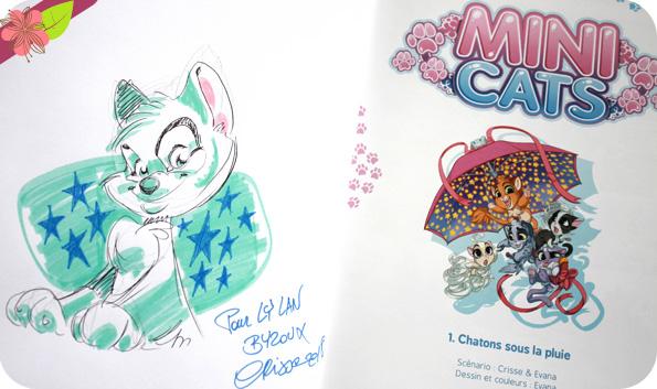 Mini Cats - Chatons sous la pluie de Crisse et Evana - Kennes