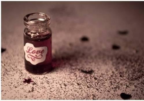 Ramuan cinta dari darah dan lalat