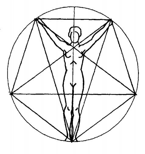 كيفية تحديد النسب لرسم الاشخاص -نسب رسم البورتريه