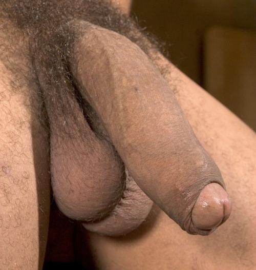 tumblr Latin gay video