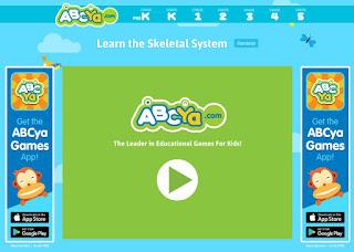 Skeletal System - PurposeGames