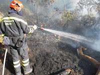 požar Sumartin lokalitet Sv. Mikula slike otok Brač Online