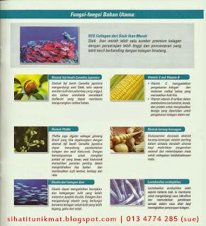 bahan utama kolagen shaklee