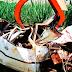 Jovem morre após capotar carro nas imediações da Vila Albinópolis