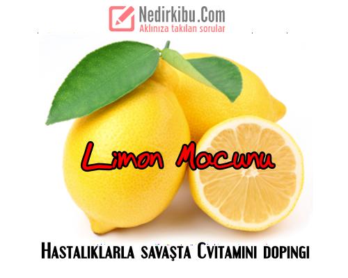 Bağışıklık Güçlendirici Hastalıklardan Koruyucu Limon Macunu!