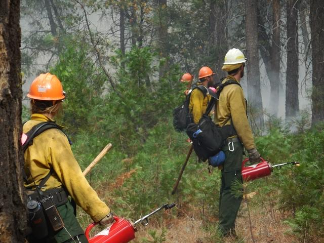 Prescribed Fire Igniters