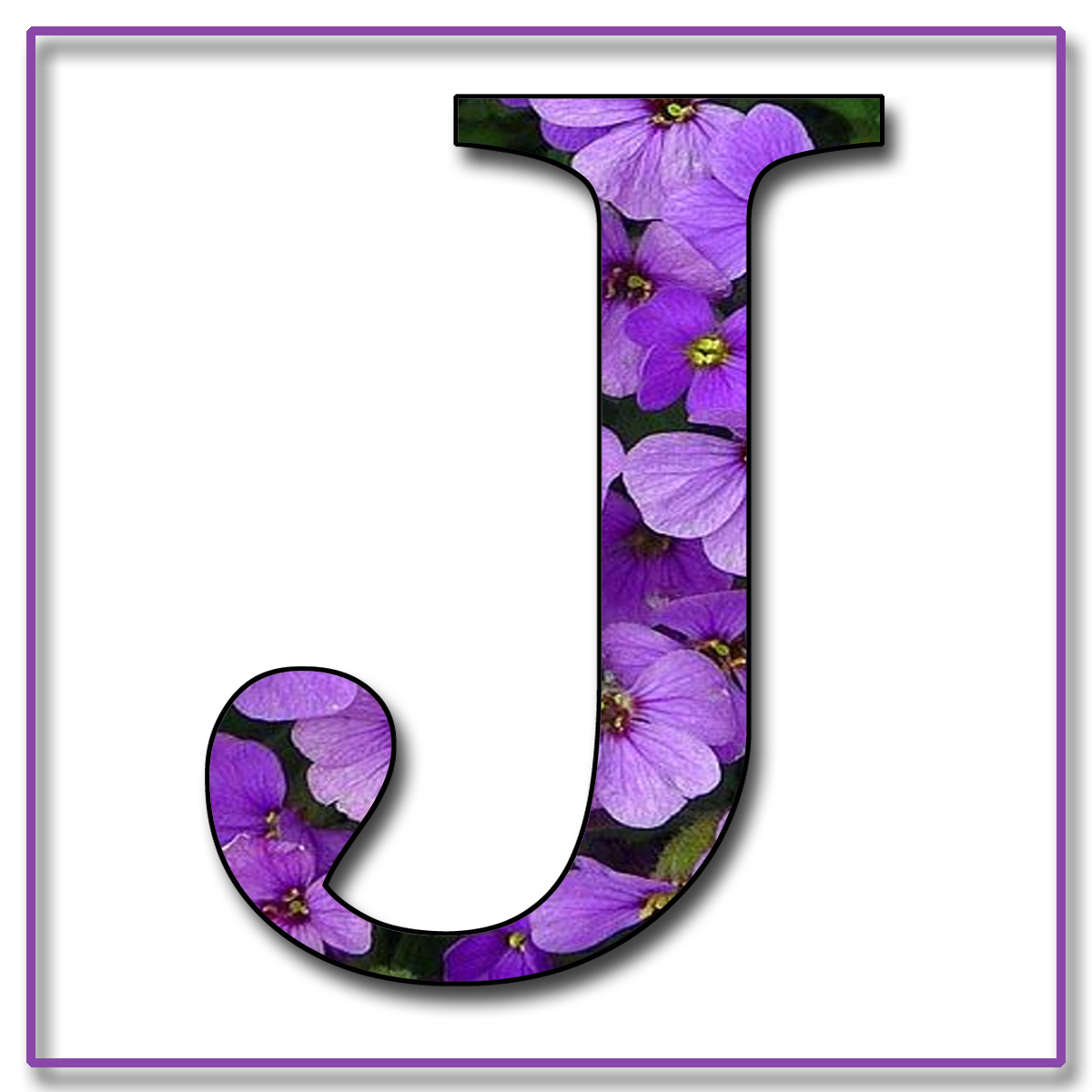 J Purple Flowers Free Scrapbook Alphabet