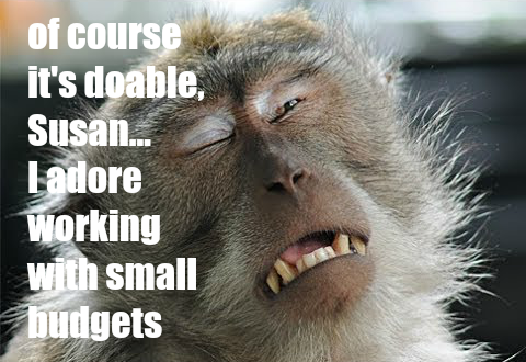 Funny meme interior design monkey working with small budget by Hello Lovely Studio
