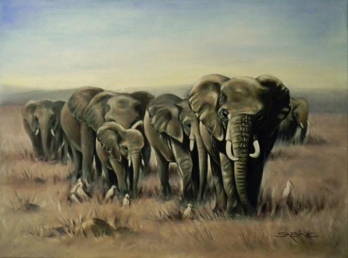 Красота Южной Африки. Sabine Barber
