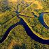 5 razões para acreditar que o desmatamento será reduzido e revertido