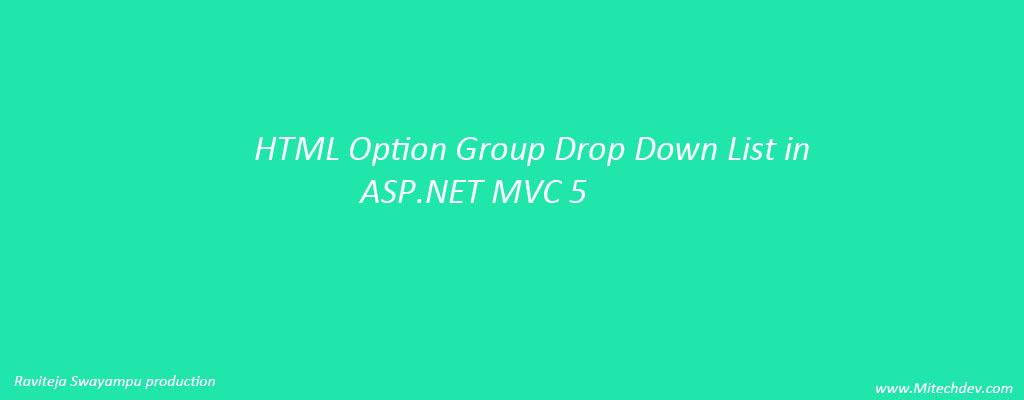 Asp Net Option Group 2