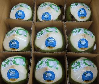 kelapa impor thailand dikemas karton