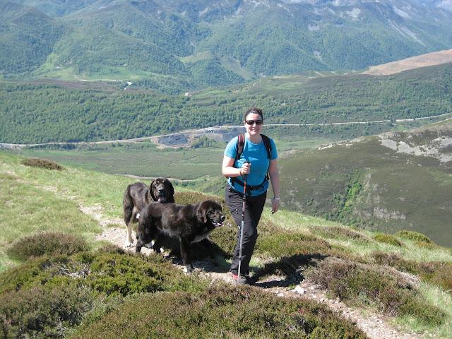 Rutas Montaña Asturias: Llegando a la cima del Cueto Arbás