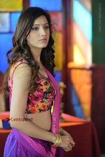 Actress Richa Panai Stills in Half Saree at Rakshaka Bhatudu Sets  0013.JPG