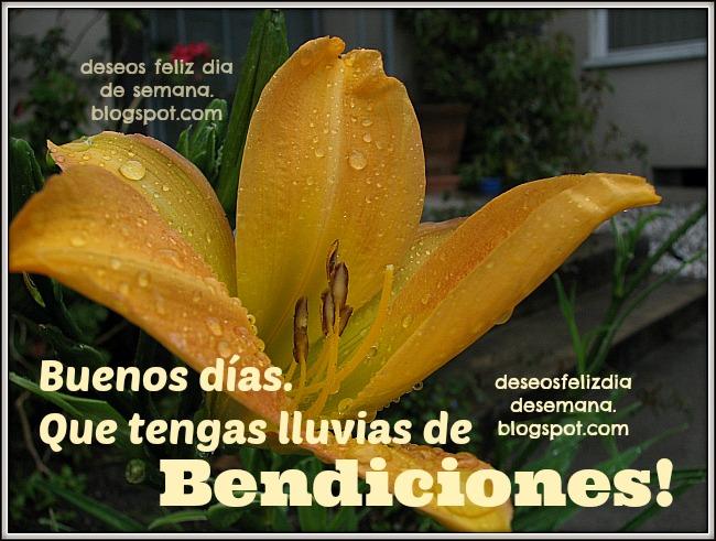 Buenos Días Lluvias De Bendiciones Para Ti Imágenes Y Deseos