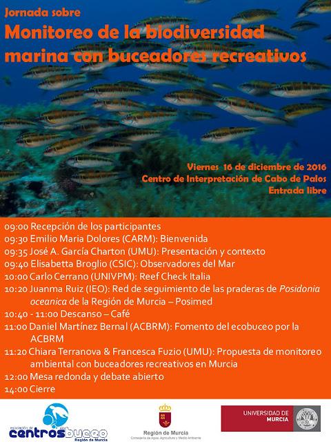 Monitoreo de la biodiversidad marina con buceadores recreativos.