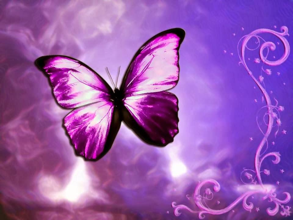 A pillangó, mint a teljes átalakulás szimbóluma
