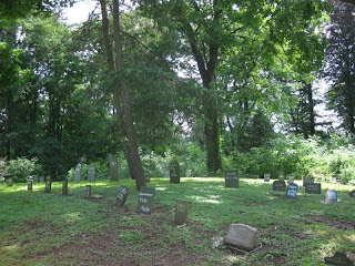 Rows of headstones in a well-shaded pet cemetery.