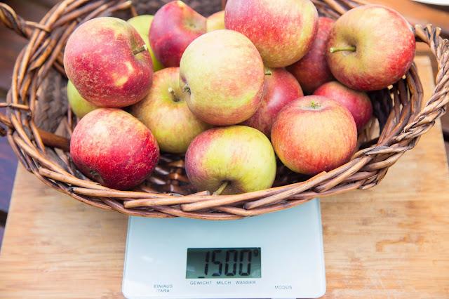 apple-crumble dutch-oven outdoor kitchen  04