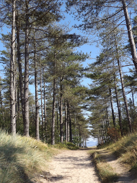 newborough-beach, anglesey, north-wales, travel