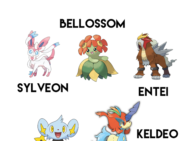 My Favourite Pokemon Characters #1 | Lifestyle