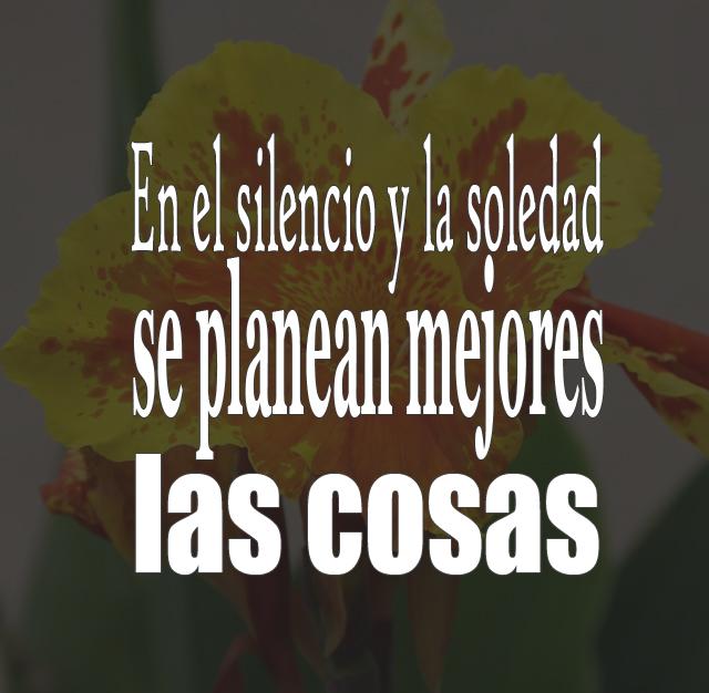 En el silencio y la soledad se planean mejores las cosas