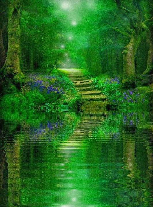 ShowMe Nan: Peaceful Path