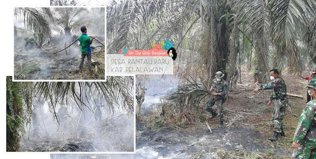 Kebakaran Hutan Sumatera Kalimantan 2015