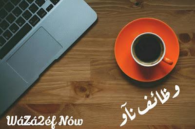 وظائف محاسبين اليوم في مصر | وظائف ناو