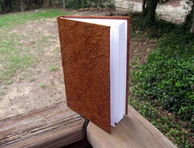 The book of spells nicola de pulford