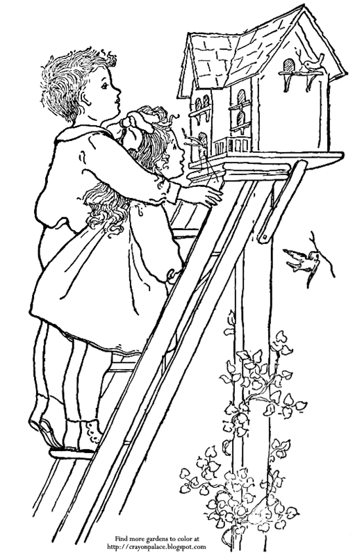 bird watching coloring pages - photo#14