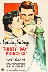 Watch Thirty Day Princess Online Free in HD