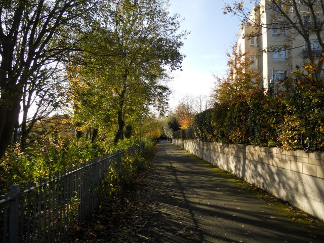 A Relaxing Walk on the River Dodder in Dublin Ireland - Sidewalk Safari