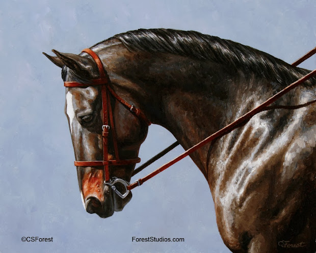 Dressage Horse Art Paintings