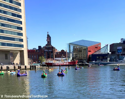 Baltimore Inner Harbor by Paddle Boat