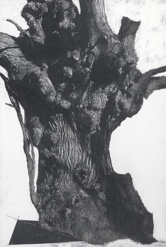 Patrick Van Caeckenbergh, contemporary drawing, Het Muziekbos