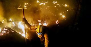 http://www.efeverde.com/noticias/35-500-hectareas-ardido-galicia/