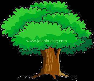 pohon vector