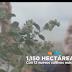 La Columna de la información de Matías Lozano Díaz de León 01 10 2018