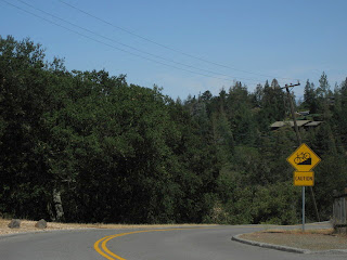 Bicycle caution sign, steep downhill grade. Page Mill Road, Palo Alto, CA
