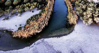 Σπάνια εικόνα από το χιονισμένο Φοινικόδασος της Πρέβελης, στο Ρέθυμνο