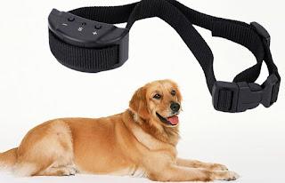 Collar de perro ladrando - Cómo entrenar a un perro para dejar de ladrar, ¿es una forma garantizada de detener el ladrido excesivo?