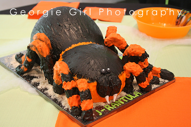 Moose Cake Birthday Roehn